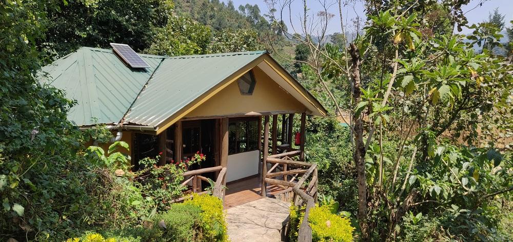 gorilla lodge Bwindi