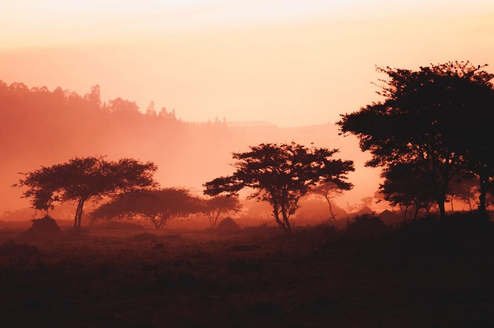 Rwanda country side
