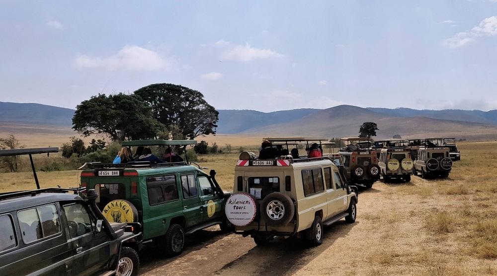 Ngorongoro Traffic Jam