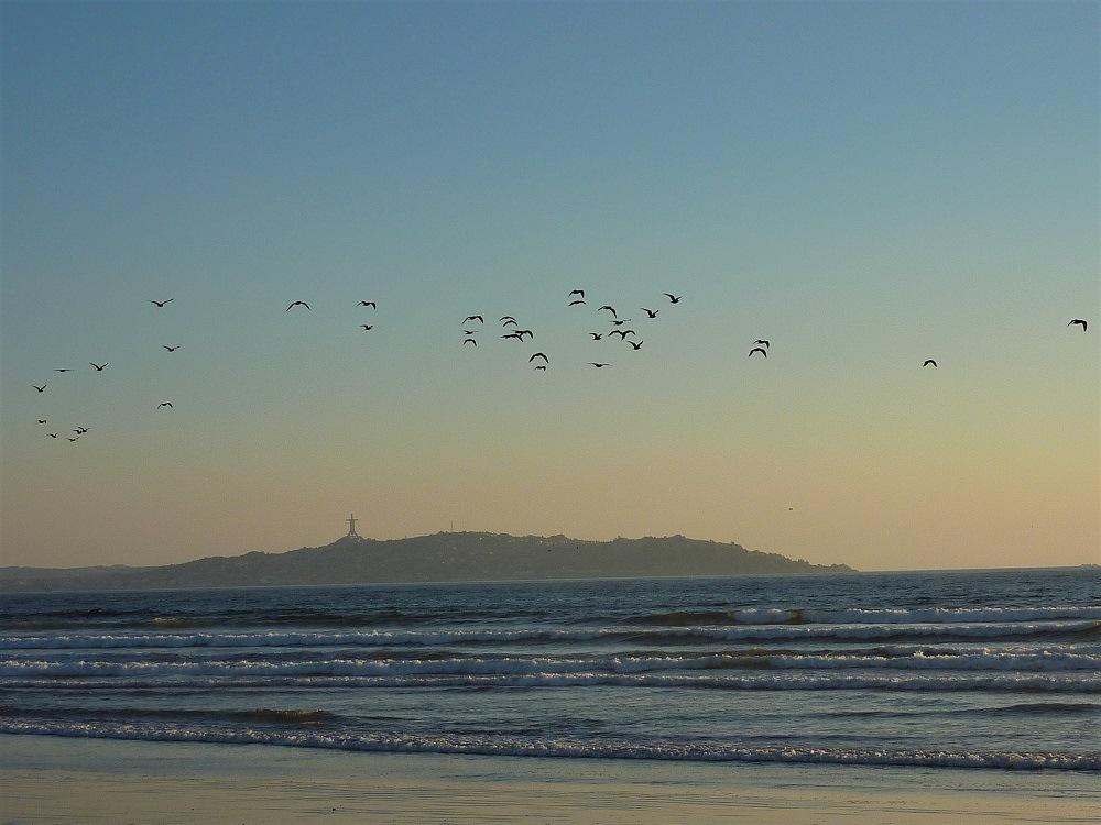 La Serena Coast Chile