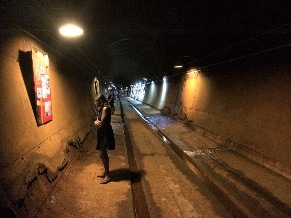 Darwin tunnels