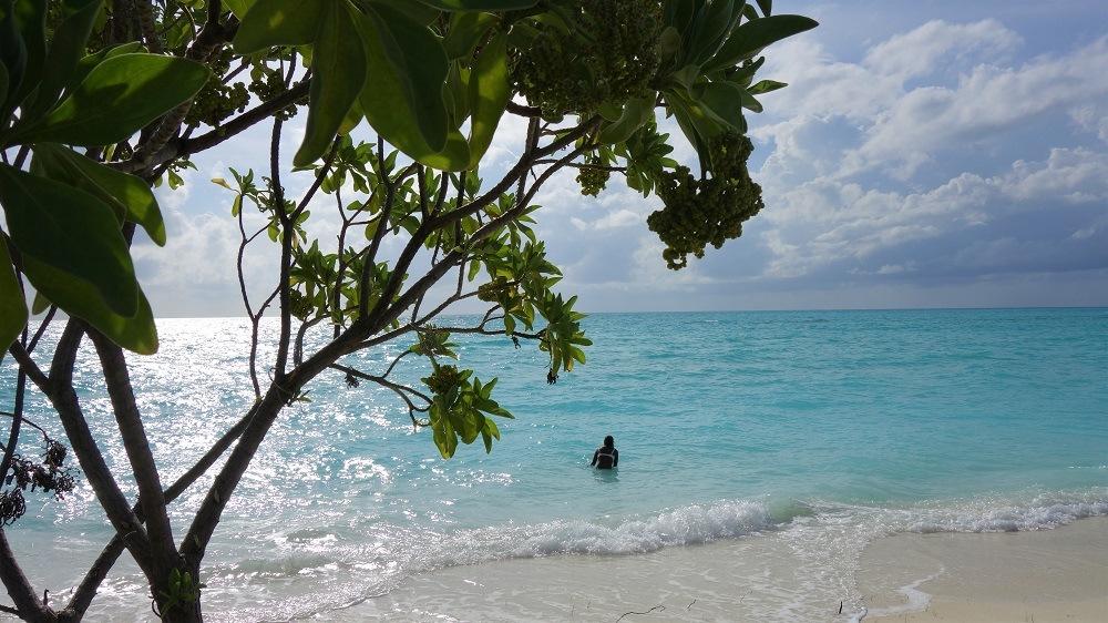 Maldives Swim