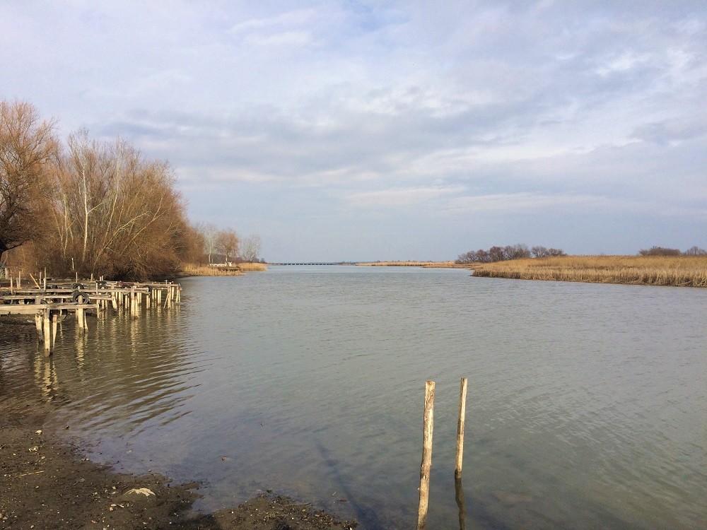 Tisza lake Hungary