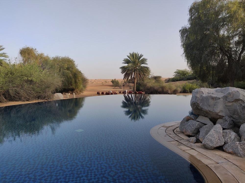 Al Maha common pool