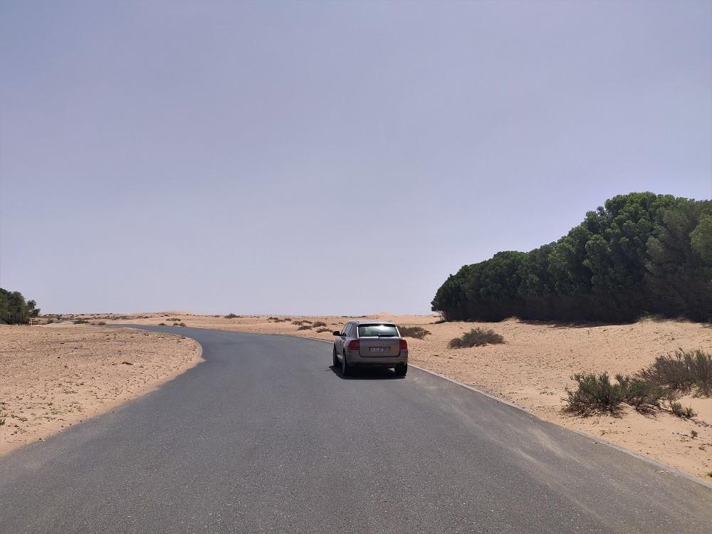 Dubai Marmoom Desert Reserve