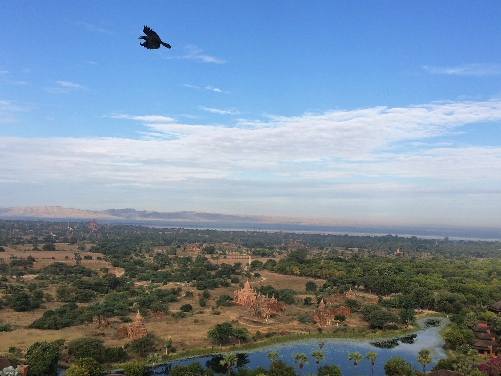 Bagan Myanmar tower