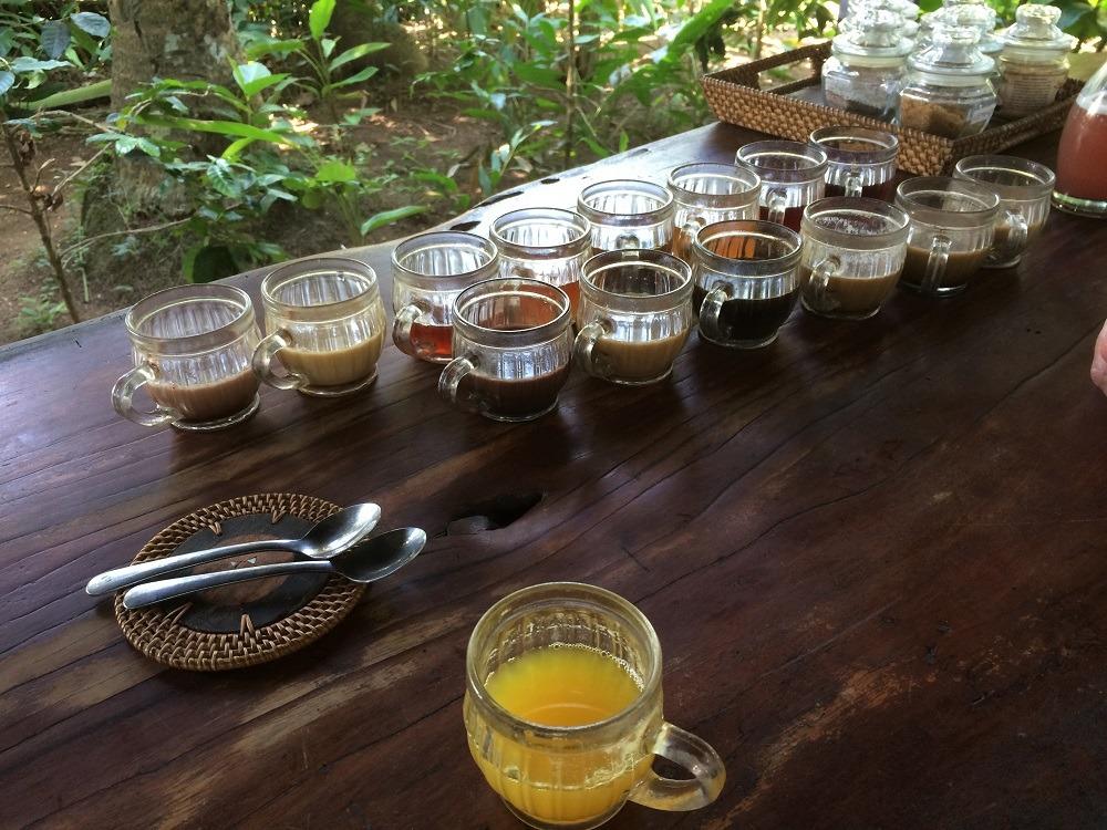 Kopi Luwak tasting Bali
