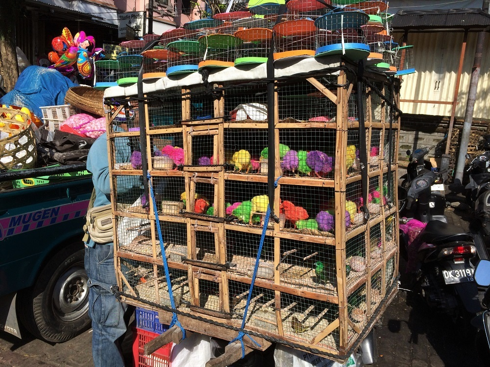 Ubud Market Bali
