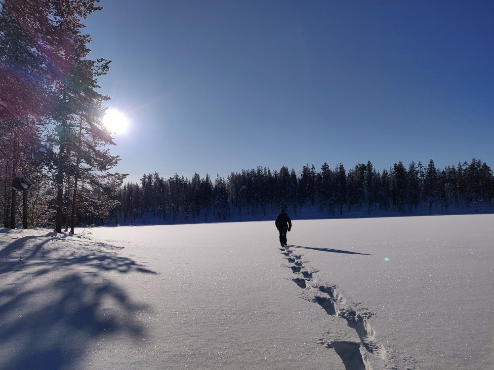 Snow Shoes hike