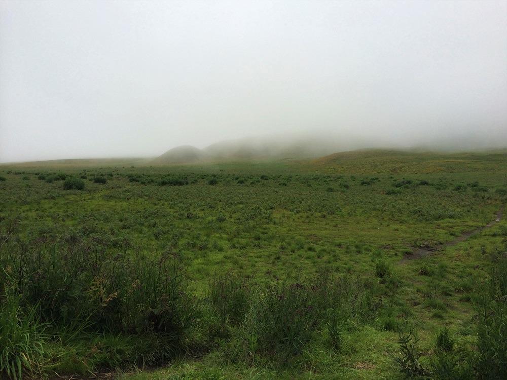 Tengger Bromo National Park