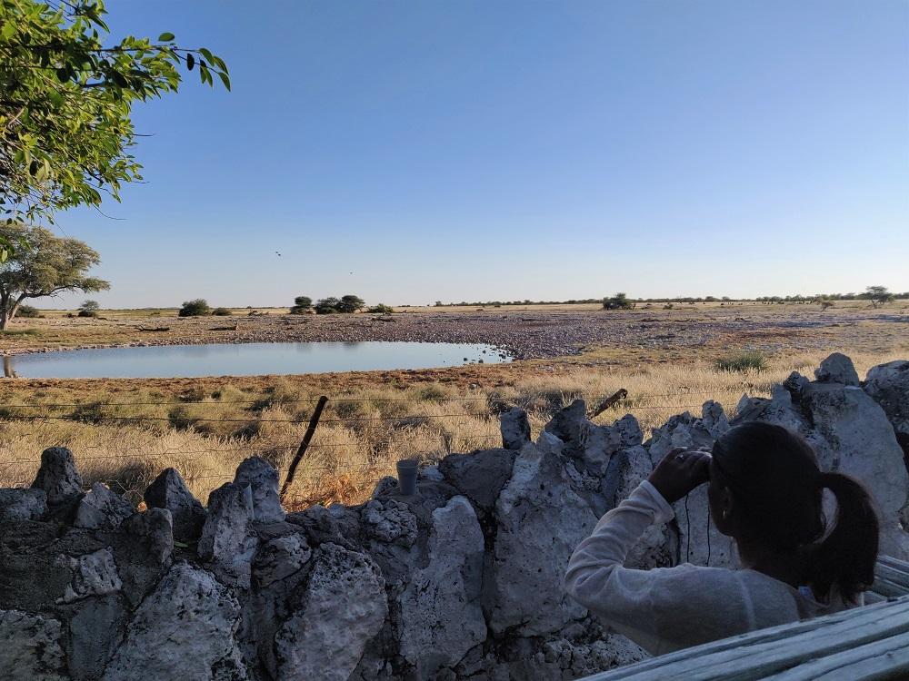 Etosha Okaukuejo Waterhole