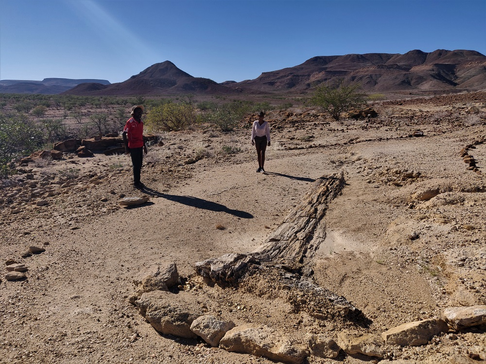 Namibia Petrified Forest